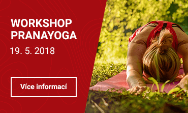 Workshop PranaYoga